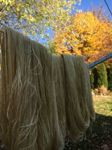 Soybean yarn have onlly 4 skeins so far to see how it does take the dye and how it will knit up. So far