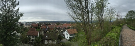 Moehlin with the Blackforest in the background